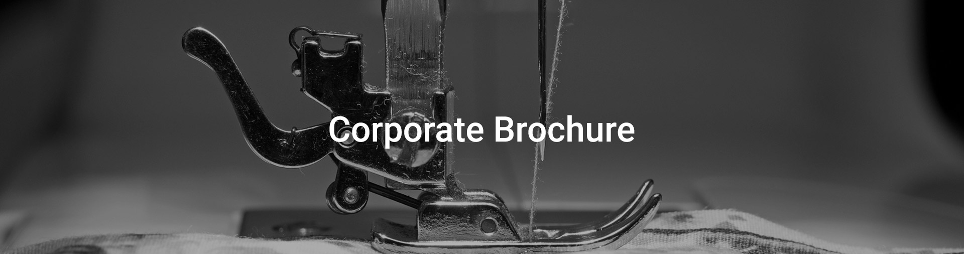 corporate broucher-pommys